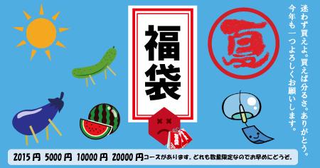 2015%90%5E%89%C4%82%CCfukubukuro.jpg