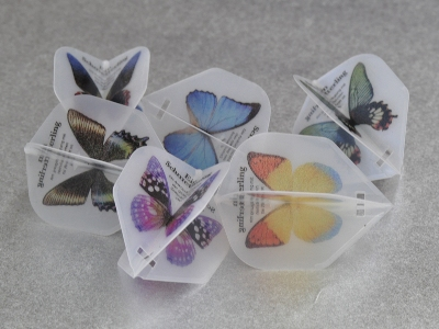 Papillon_FlightL.jpg