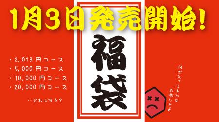 fukubukuro_2013.jpg
