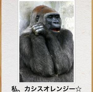 joshiryoku.JPG